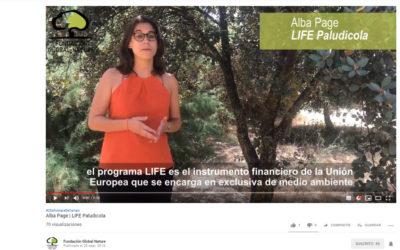 (Español) HABLAN LOS TÉCNICOS DEL LIFE PALUDICOLA