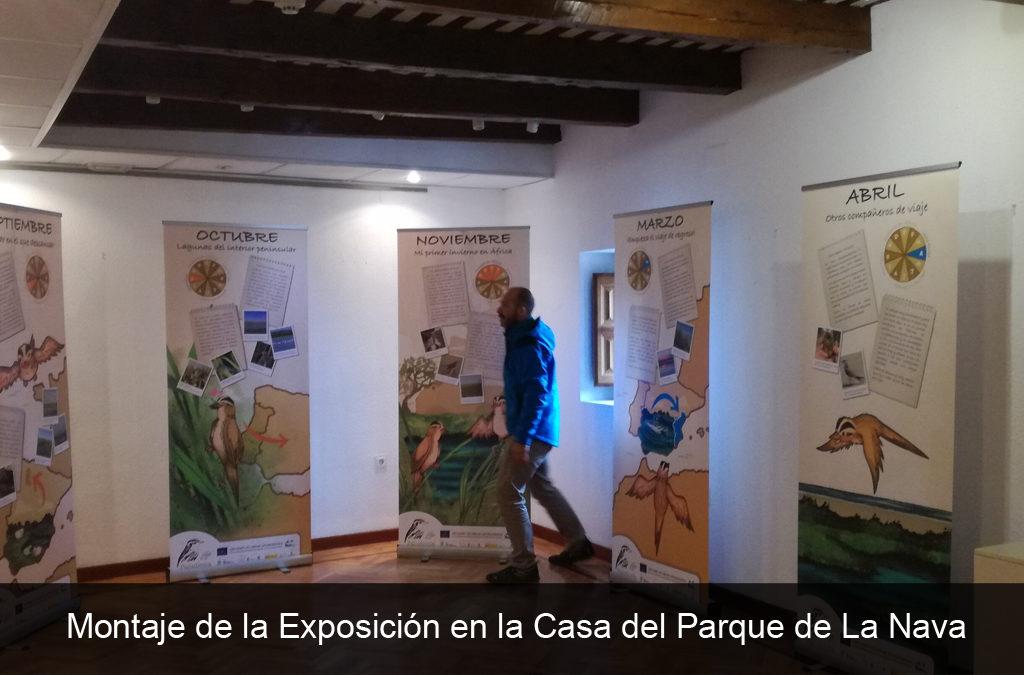CONTINÚA LA ITINERANCIA DE LA EXPOSICIÓN SOBRE EL PROYECTO LIFE PALUDICOLA