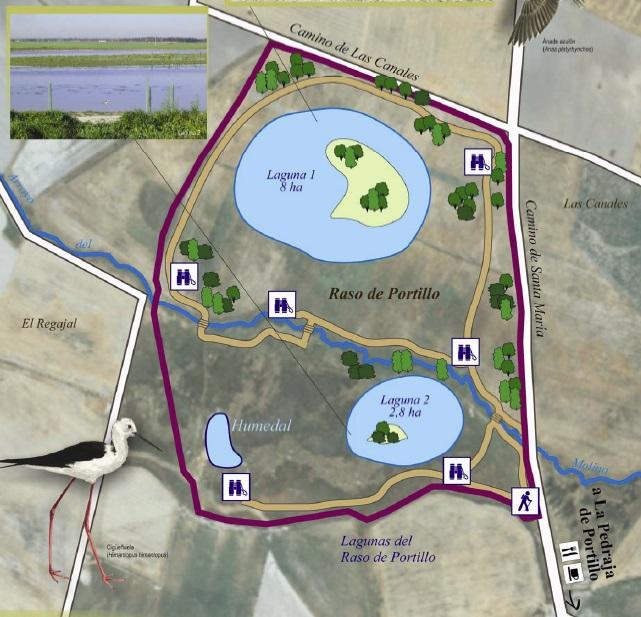 Mapa de las lagunas de El Raso de Portillo en Valladolid. Fuente CHD.