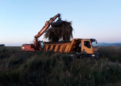 Recogida de biomasa segada en el Prat