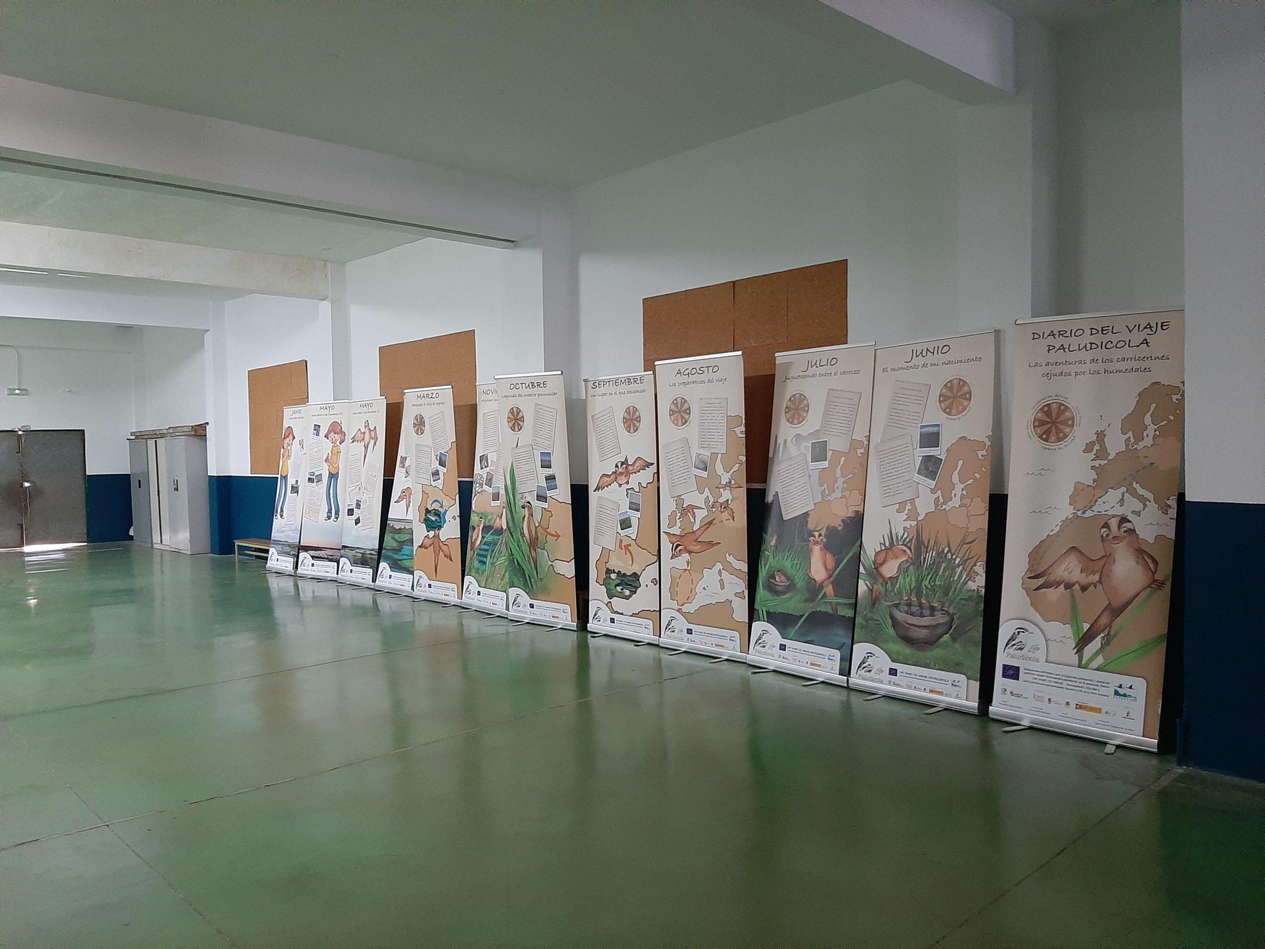 C:\Users\Usuario\Desktop\LIFE_Paludicola\FOTOS\Fotos_Acciones\E2\2020_02_19_ColegioMartíSorolla_Valencia\20200217_154501.jpg