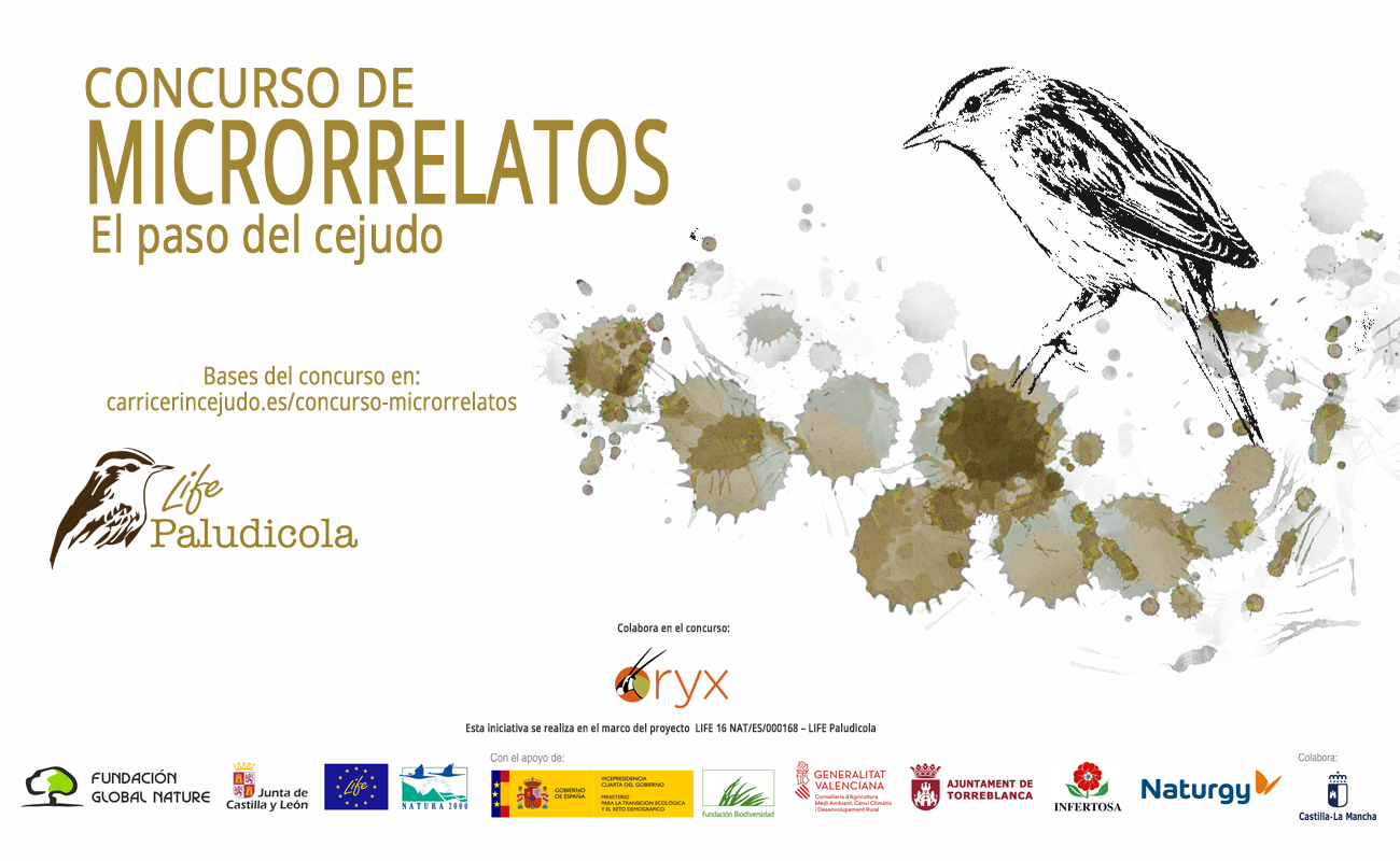 https://carricerincejudo.es/wp-content/uploads/2020/07/cartel-concurso_web.jpg