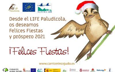 (Español) ¡FELICES FIESTAS Y PRÓSPERO 2021!