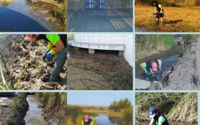 AL MAL TIEMPO, BUENAS PLANTAS. NUEVA TEMPORADA DE PLANTACIONES EN LA COMUNIDAD VALENCIANA